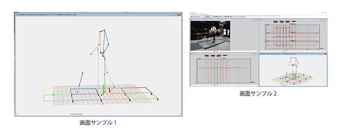 三次元杖荷重計 画面サンプル